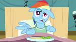 Rainbow Dash weird face S02E16