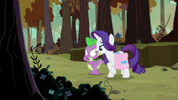 Rarity -well, they are beautiful- S8E11