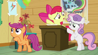 Apple Bloom -who's gonna run the Manehattan CMCs-- S5E04