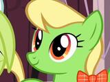 Apple Munchies