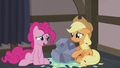 Applejack gets a rock for a present S5E20.png