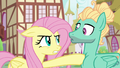 Fluttershy poking Zephyr with her hoof S6E11.png