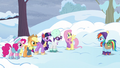 Mane Six in winter clothes with Tank S5E5.png