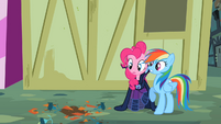 Pinkie Pie and Rainbow Dash avoiding a flowerpot S2E08