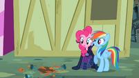 Pinkie Pie and Rainbow Dash avoiding a flowerpot S2E08