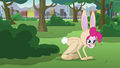 Pinkie Pie disguised as a rabbit EG3.png