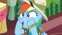 "Rainbow Dash ""so excited!"" S6E13"