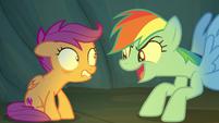 Rainbow Dash -the big, scary, mean kind!- S7E16