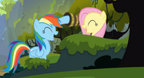 Rainbow Dash and Fluttershy high-hoof S3E09