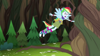 Rainbow Dash trips over Gloriosa Daisy's vines EG4