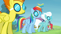 Rainbow and the Wonderbolts with goggles S4E10.png
