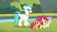 Terramar and Crusaders heading to Seaquestria S8E6