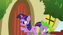 Twilight knocking on Fluttershy's door S03E13