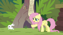 Angel hopping away from Fluttershy S9E18