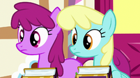 Berryshine and Sassaflash looking at Pinkie S7E14