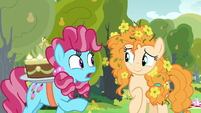 "Chiffon Swirl ""your families hate each other"" S7E13"