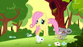 Filly Fluttershy looking at bunnies running away S1E23.png