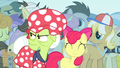 Granny Smith angry at Flim and Flam S4E20.png