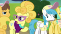Lemon Chiffon disparaging Fluttershy again S7E14.png