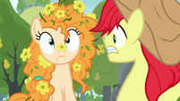 Pear Butter covered in buttercups S7E13