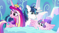 "Princess Cadance ""it looks that way"" S6E1.png"