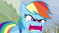 "Rainbow ""Do I look angry?!"" S5E5.png"