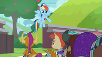 "Rainbow Dash ""but all of you do"" S9E15"