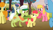 S02E15 Babcia Smith uspokaja Apple Bloom