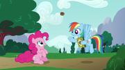 S06E15 Rainbow podrzuca ciastko do Pinkie