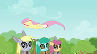 Animals helping Fluttershy S2E22