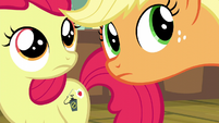 Apple Bloom and Applejack hears pest control pony S5E04