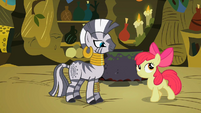Apple Bloom flatters Zecora 1 S02E06