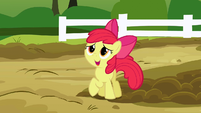 Apple Bloom talking to Applejack in the piggie den S3E9