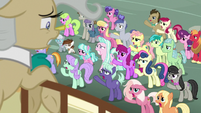 Earth ponies yelling at Mayor Mare S9E25
