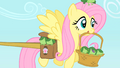 Fluttershy carrying frogs S1E15.png