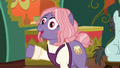 "Matronly Pony ""the way she made it"" S6E12.png"
