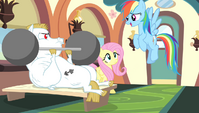 "Rainbow Dash ""with the possible exception of"" S4E24"