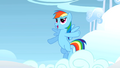 Rainbow Dash about to start S1E16.png