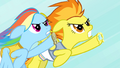 Rainbow Dash and Spitfire neck and neck S4E24.png