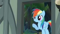 Rainbow Dash looking into the house S4E04