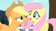 S04E07 Applejack mówi do Fluttershy