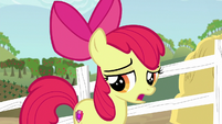 Apple Bloom --I do have a family tradition-- S6E14