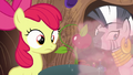 Apple Bloom and Zecora sees an explosion S6E4.png