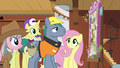 Expert ponies look at Fluttershy's dream board S7E5.png