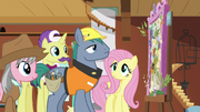Expert ponies look at Fluttershy's dream board S7E5