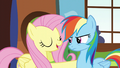 "Fluttershy ""when the spring sun warms the ground back up"" S5E5.png"