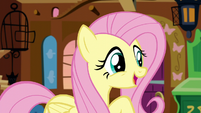 Fluttershy -I really need to rest up- S5E3