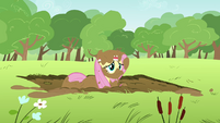 Fluttershy in mud S2E22