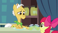 Grand Pear gives Apple Bloom pear jam for free S7E13.png