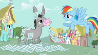 Rainbow Dash 'No offense' S2E22